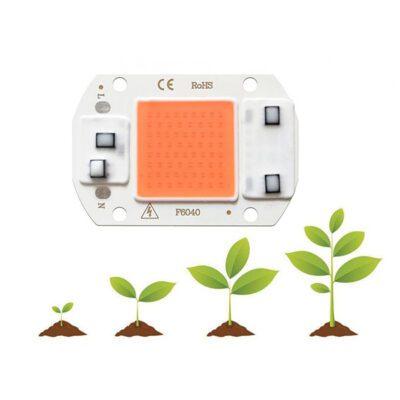 LED COB مخصوص رشد گیاه 220V 30W با درایور